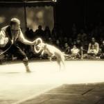 Circus 24flat